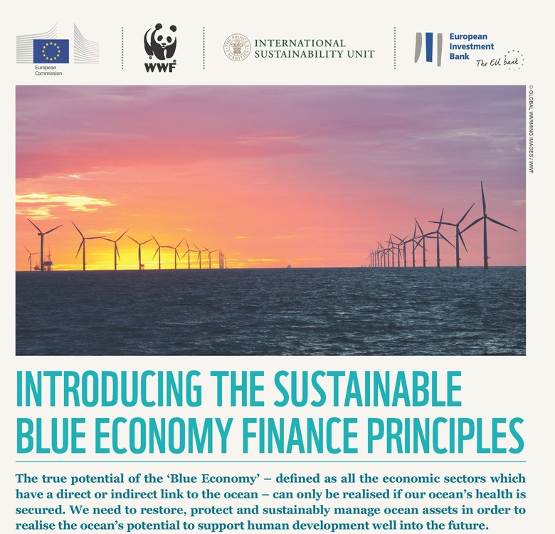 Introducing sustainable blue economy finance principles en Page 1